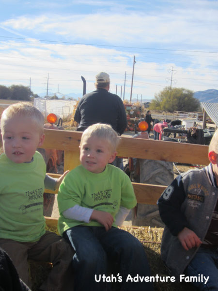 You get to ride on a hayride over to pick your pumpkins.