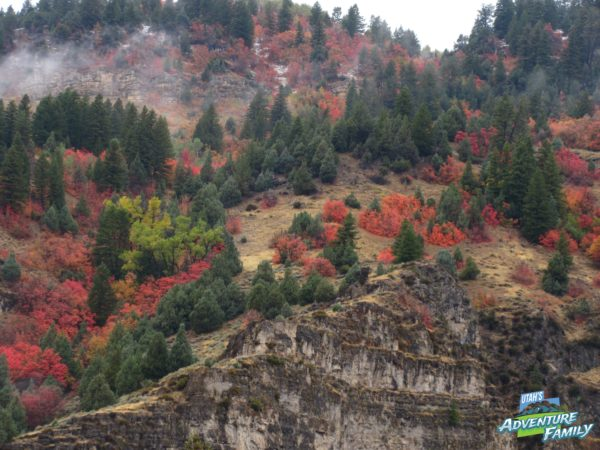 fall-drives-logan-canyon-2
