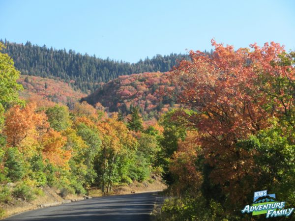 fall-drives-nebo-loop-1