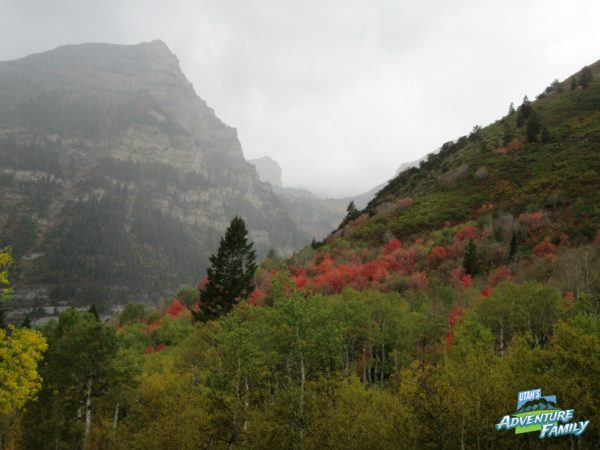 fall-drives-provo-canyon-2