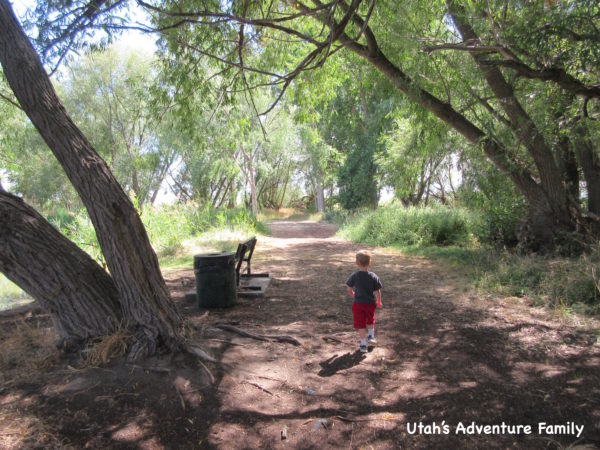 There are so many great little places to explore!