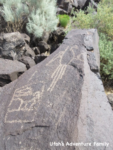 petroglyphs-national-monument-13