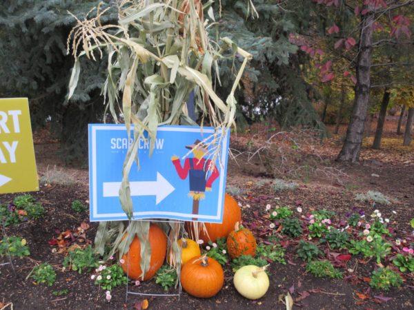 scarecrow-festival-1