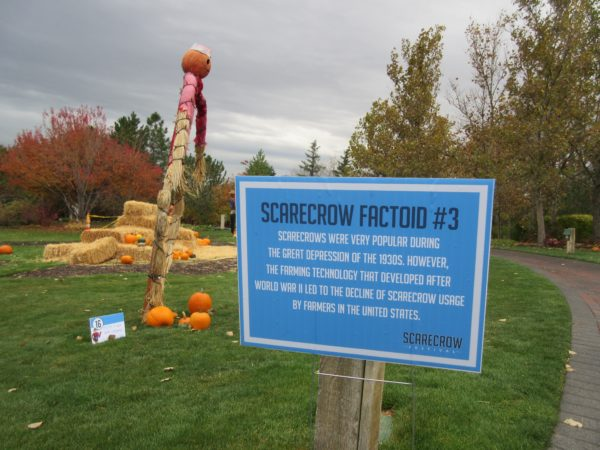 scarecrow-festival-5