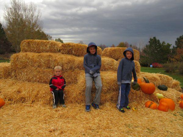 scarecrow-festival-6