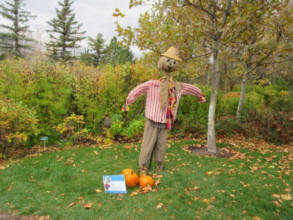 scarecrow-festival-7