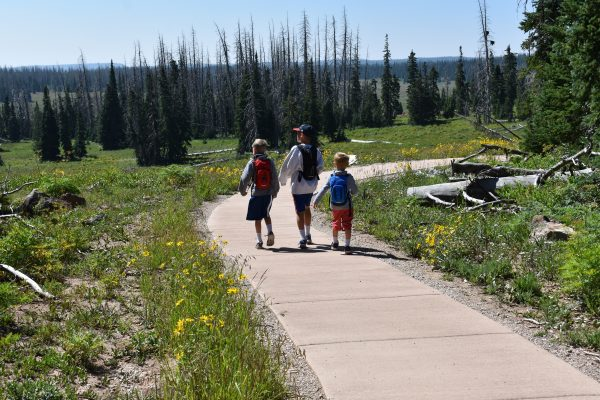 Paved Sunset Trail in Cedar Breaks National monument.