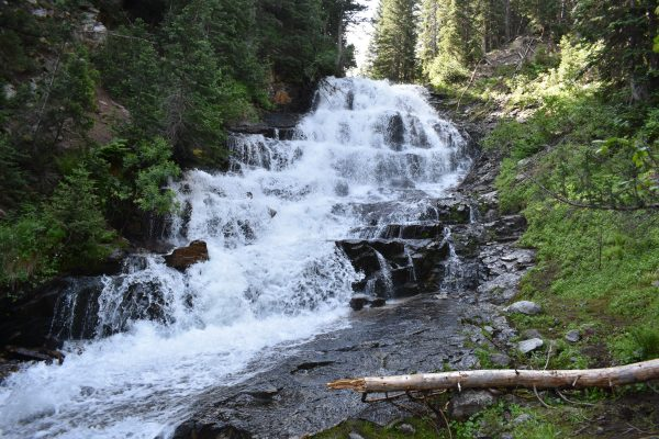 Gloria Falls is one of our favorite family friendly hikes in Utah.
