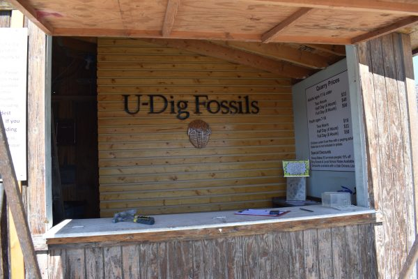 U-Dig fossils check in counter
