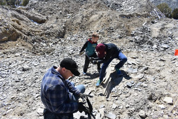 the rock quarry at U Dig fossils with people hammering