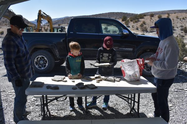 children looking at fossils on a table