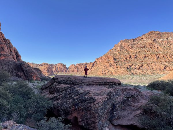 View of Snow Canyon