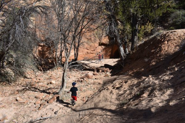 kids hiking on the hobbit hole trail